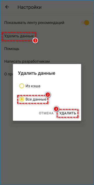 Чистка данных в Яндекс.Браузере Лайт