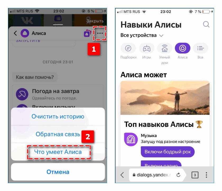 Возможности Алисы в Яндекс Браузере